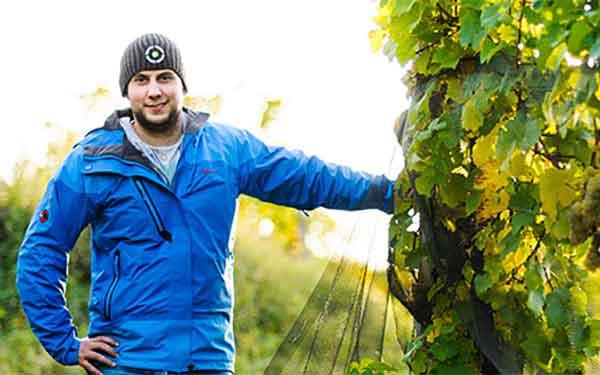 Weingut Obenaus - Wein aus dem Schmidatal