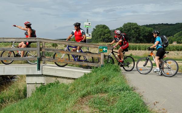 E-Bike und Radweg der Rivaner