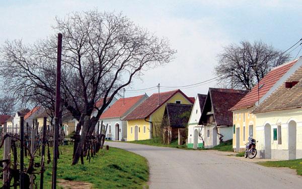 Die Kellergassen und Weinrieden im Schmidatal – Kellergasse in Niederschleinz