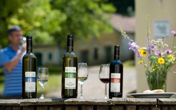 Winzerhof & Gästehaus Familie Greil - Wein im Schmidatal