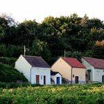 Malerische Kellergassen im Weinviertler Schmidatal