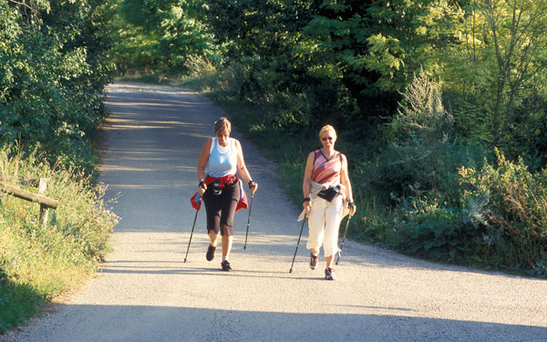Nordic-Walking-Tour in Ziersdorf