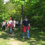 LebensKraftWeg – Nordic-Walking-Ziersdorf-schmidatal-Niederösterreich