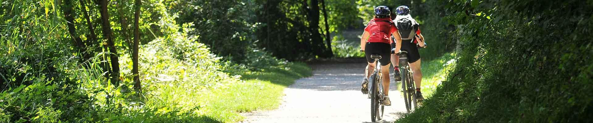 Radweg - Radfahren im Schmidatal