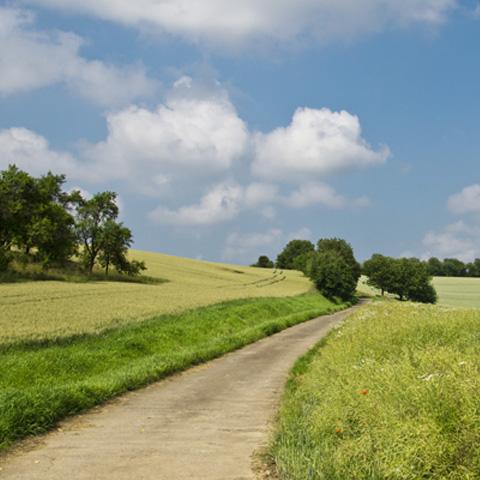 Wandern im Schmidatal - Weinviertel