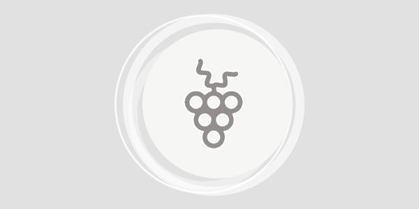 Symbolbild Ausgsteckt Is - Heurigenkalender im Schmidatal