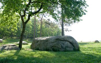 """Steinkreis """"Alte Kuh"""" am Libellenteich - Maissau - Schmidatal Manhartsberg in Niederösterreich"""